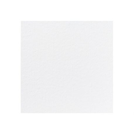 Biele obrúsky Dunilin 40cm/12ks